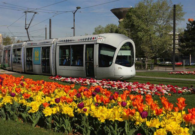 Venissieux-ville-fleurie